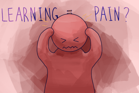 Does Learning Require Pain?